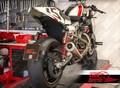 Freespirits Harley XR1200 ライセンスプレートブラケット [cod. 208918]