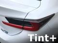Tint+ レクサス RC300h/RC300/RC350/RC-F AVC10/ASC10/GSC10/USC10 前期 テールランプ 用
