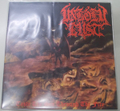 Unholy Lust - Taste The Sin, Through The Fire LP