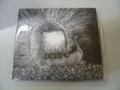 NAV' - From Nav to Jav デジパック CD