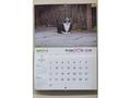猫歴2018カレンダー(京都どうぶつあいごの会)