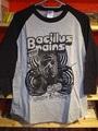 ■THE BACILLUS BRAINS 日本脳炎  中古Tシャツ