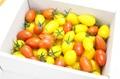 ミニトマト詰め合わせ 1kg詰め