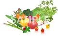 No.628 野菜のイラスト 1