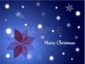 No1084 クリスマスのイラスト 雪とポインセチア
