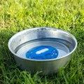 ペット用浄水器 Gopurepet 犬、猫、馬、ウサギ使用可能