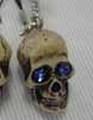 Blue eyes Skull携帯ストラップ[プラケース入り]