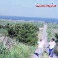 kasarinchu