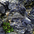 GARIMPEIRO