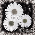 ■ギルティア「雪月花」