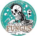 FUNGUS 2015缶バッチ2個セット⑦
