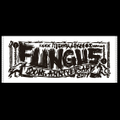 FUNGUS 20th ANNIVERSARY タオル