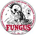 FUNGUS 2015缶バッチ2個セット③
