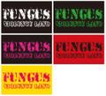 ■FUNGUS_VIOLENCE LANDステッカー5枚セット