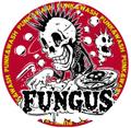 FUNGUS 2015缶バッチ2個セット⑥