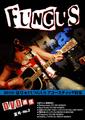 ■FUNGUS DVD通信 No.2夏号