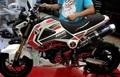 GROM(MSX) グロム Ducati グラフィックデカール