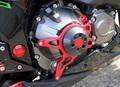 Z800 エンジン/ケース スライダー/プロテクター