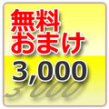 WTD発送 3,000円以上お買い上げのオマケ