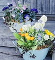 母の日に贈る、花いっぱいの寄せ植え講座@JA東京むさし
