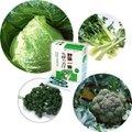 野菜一番生搾り青汁 3g×30袋入