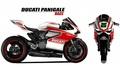 パニガーレ レースグラフィック2