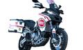 ムルティストラーダ 1200 Lucky Explorer グラフィック ステッカー