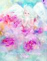 No,4薔薇と天使 水彩画ポストカード