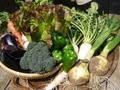 お野菜好きな方へ定期購入3,500円ボックス