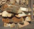 コナラの薪(平成28年12月伐採)