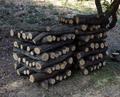 キノコ栽培用原木丸太(平成25年10~12月伐採)