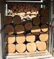 ニセアカシアの玉切り丸太(平成25年2月伐採)