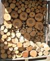 広葉樹混合玉切り丸太(平成24年12月伐採)