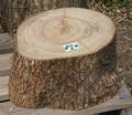 クスノキの薪割り台(1)