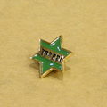 satori pin bugde GREEN