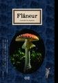 Flaneur vol.2