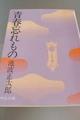 青春忘れもの(文庫)