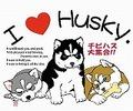 チビハス I love Husky (Mサイズ)