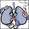 肺臓イラストhai02