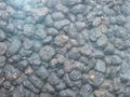 青ぶるソイル ノーマル 3ℓ