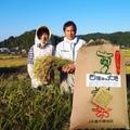 玄米25kg(森のくまさん)