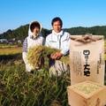 玄米5kg(森のくまさん)