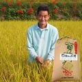 玄米25kg(コシヒカリ)