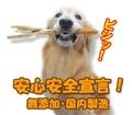馬アキレス ロング 3本入り 無添加安心安全国内製造! 犬のおやつ