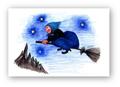 ポストカード「夜空の散歩」