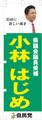 のぼり特急便 5枚セット-02