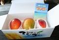 宮古島産完熟アップルマンゴーB級品1kg  (1kg箱入り)×1箱