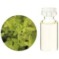 マジョラム【3mlサイズ】香りの素晴らしさと同様に、たくさんの優れた働きがあるため、用途も広く非常におすすめなオイルです