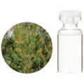 ティートゥリー【3mlサイズ】殺菌作用が強く、使用範囲の広いオイルです