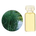 レモングラス【3mlサイズ】蚊が嫌う香りとしても有名なオイルです。やる気を蘇らせてくれる効能があります